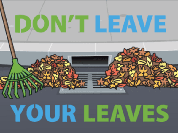 dont leave your leaves